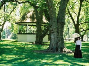 Walla Walla, a Tree City USA for