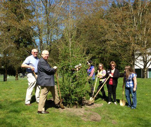 Auburn's mayor helps the tree board plant a beautiful Japanese larch tree. Auburn celebrated its 10th year as a Tree City USA.