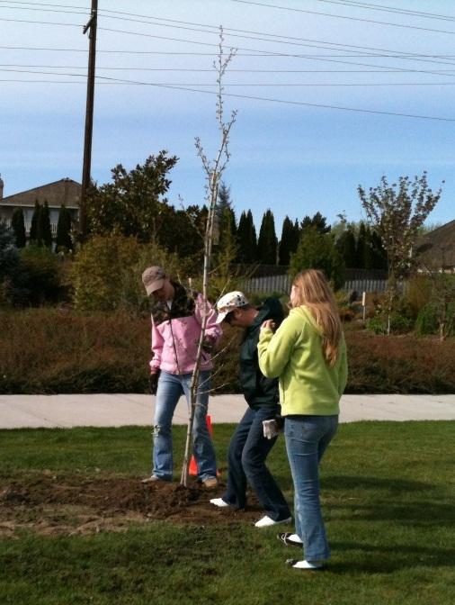 Arbor Day in Richland