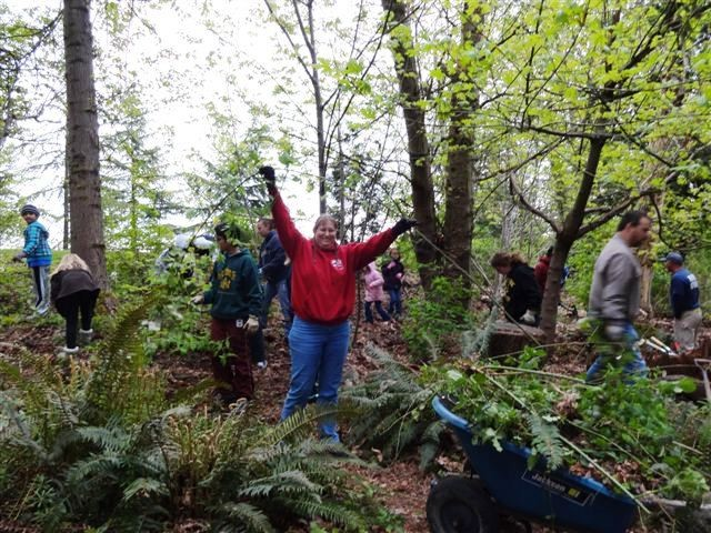Hurrah for trees! Arbor Day and forest restoration in Kent.