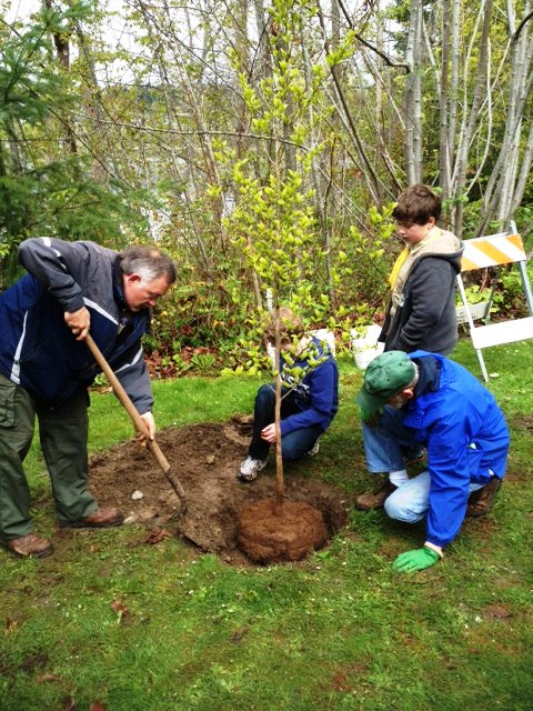 Scouts help plant trees in Poulsbo, a Tree City USA for 16 years.