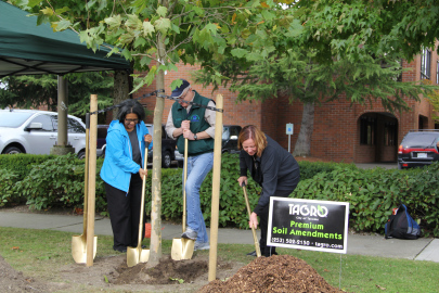 Mayor Marilyn Strickland, Dept Supervisor Lenny Young, and Councilwoman Lauren Walker plant the first tree to kick off the Hilltop Diversitree Program. PHOTO: Janet Pearce