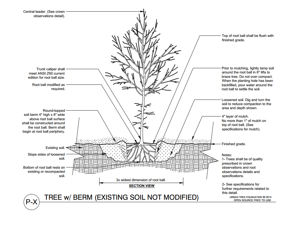 New Specs And Standards For Tree Planting Urban Forestry